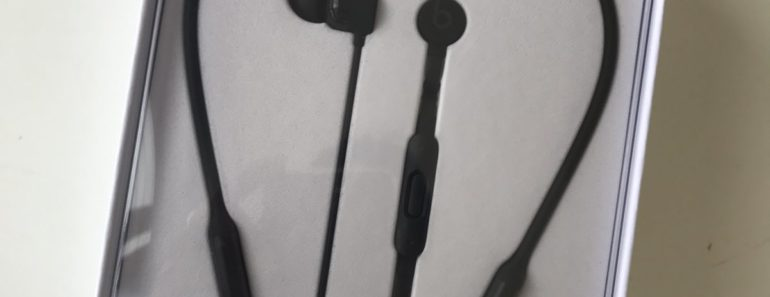 BeatsX Earphones